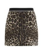 Dolce & Gabbana Skirt - Multicolor