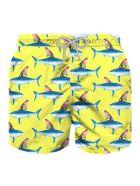 MC2 Saint Barth Shark Print And Colored Fin Boy Swim Trunks