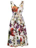 Dolce & Gabbana Floral Print Midi Dress - Basic