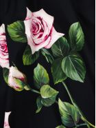Dolce & Gabbana Poplin Tracksuit Wth Tropical Rose Print - Fantasia