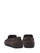 Tod's Tod's Brown Suede Loafer - T. DI MORO