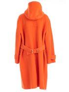 Joseph Coat Montgomery - Carrot
