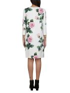 Dolce & Gabbana Floral Shift Dress - White