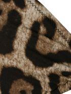Dolce & Gabbana Triangle Swimwear - Animalier