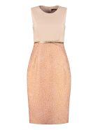 Max Mara Studio Aguzze Sheath Dress - Pink