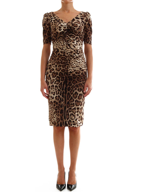 Buy Dolce & Gabbana Midi Dress Leo online, shop Dolce & Gabbana with free shipping