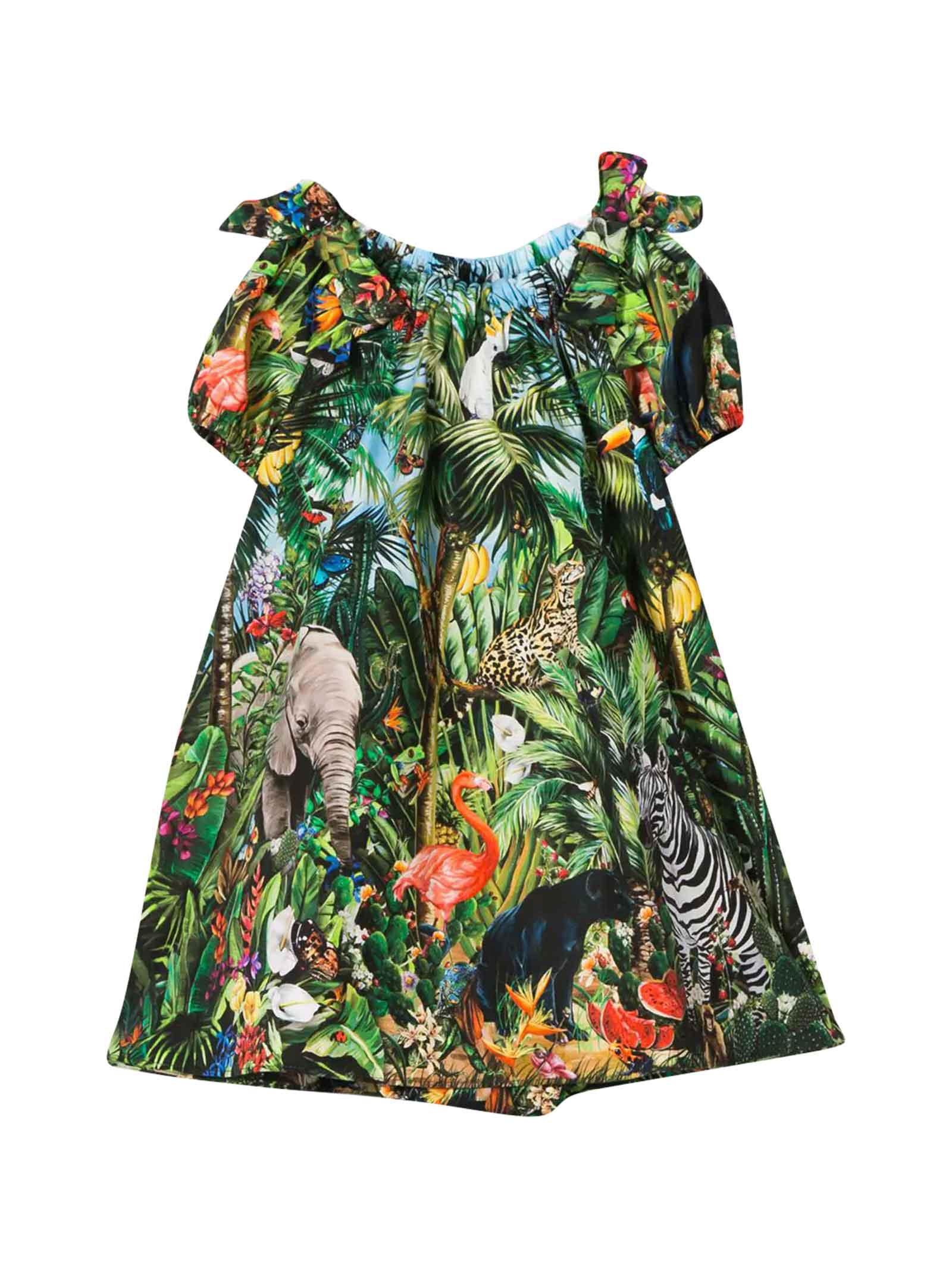 Buy Dolce & Gabbana Tropical Dress online, shop Dolce & Gabbana with free shipping