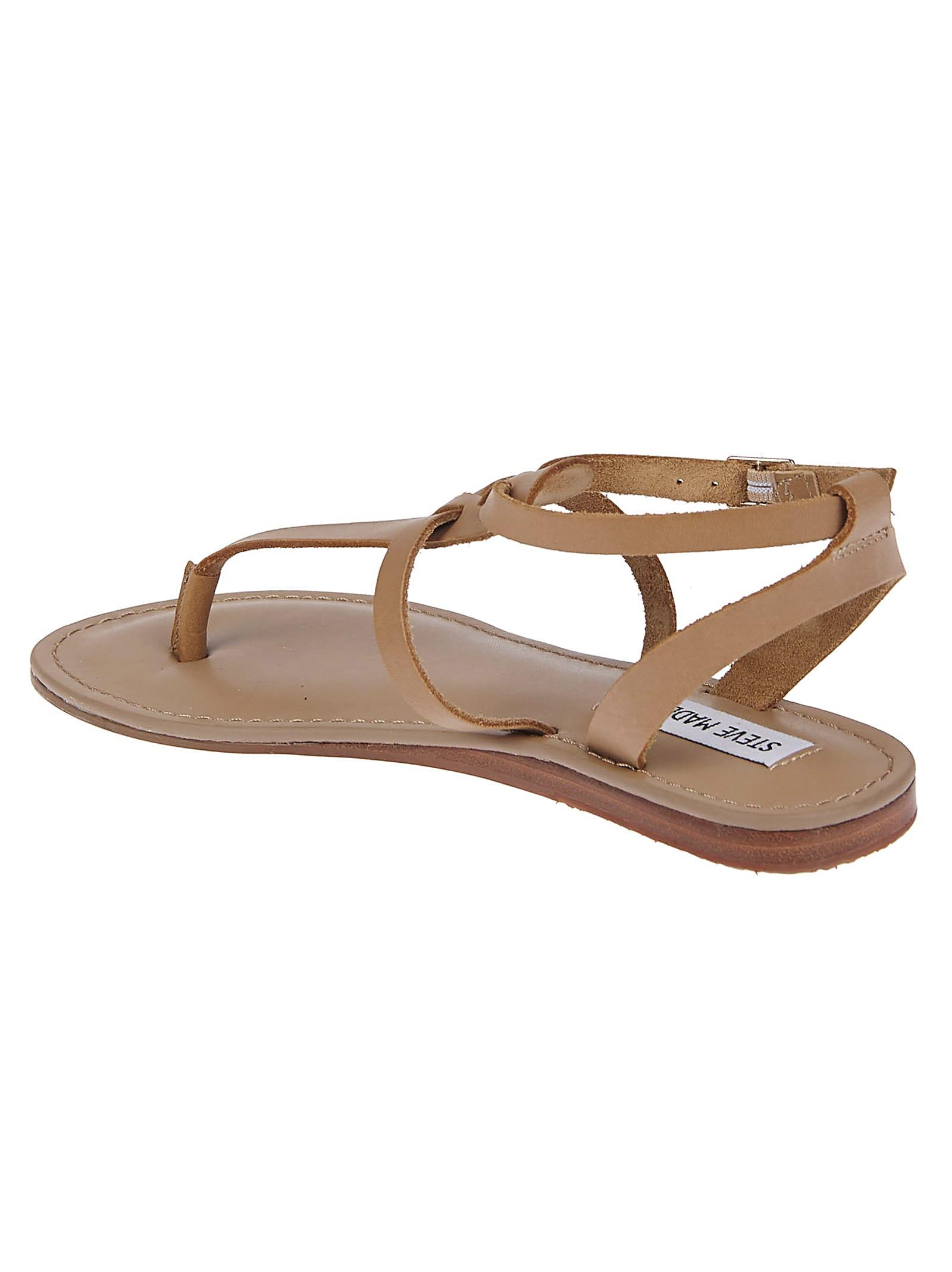 Sandals Strap Madden Flat Steve Brown Ankle 3Ajc5qRS4L
