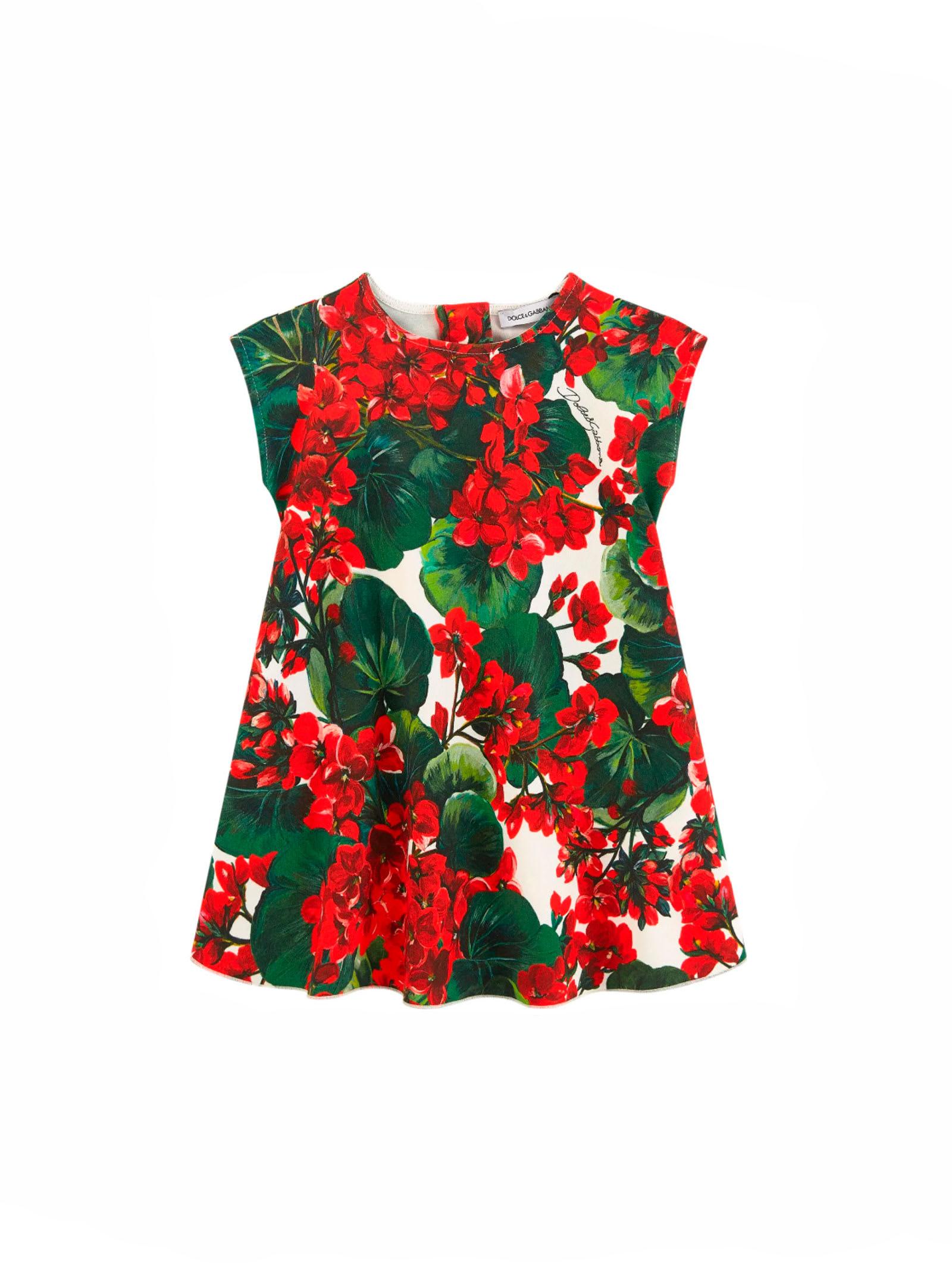Dolce & Gabbana Dolce E Gabbana Kids Baby Dress
