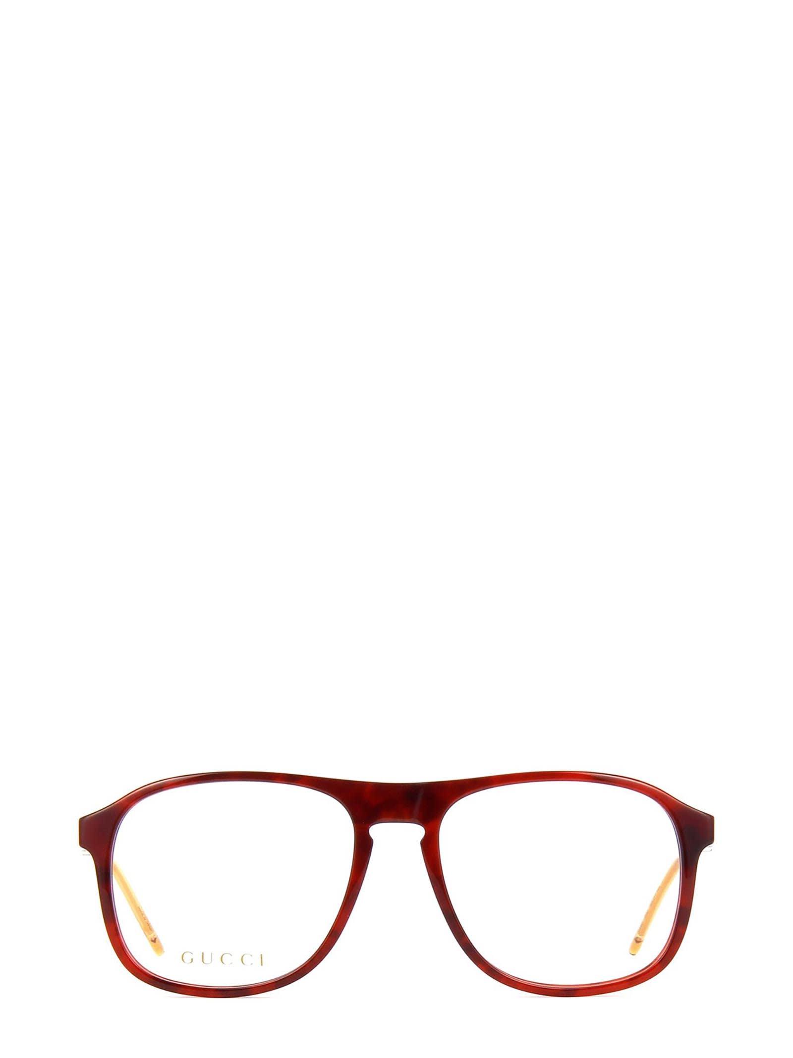 Gucci Gg0844o Havana Glasses