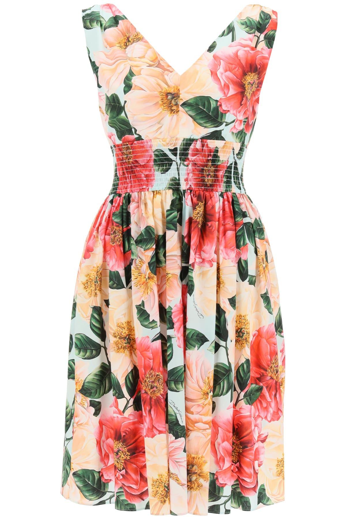 Buy Dolce & Gabbana Camellia Print Cotton Midi Dress online, shop Dolce & Gabbana with free shipping