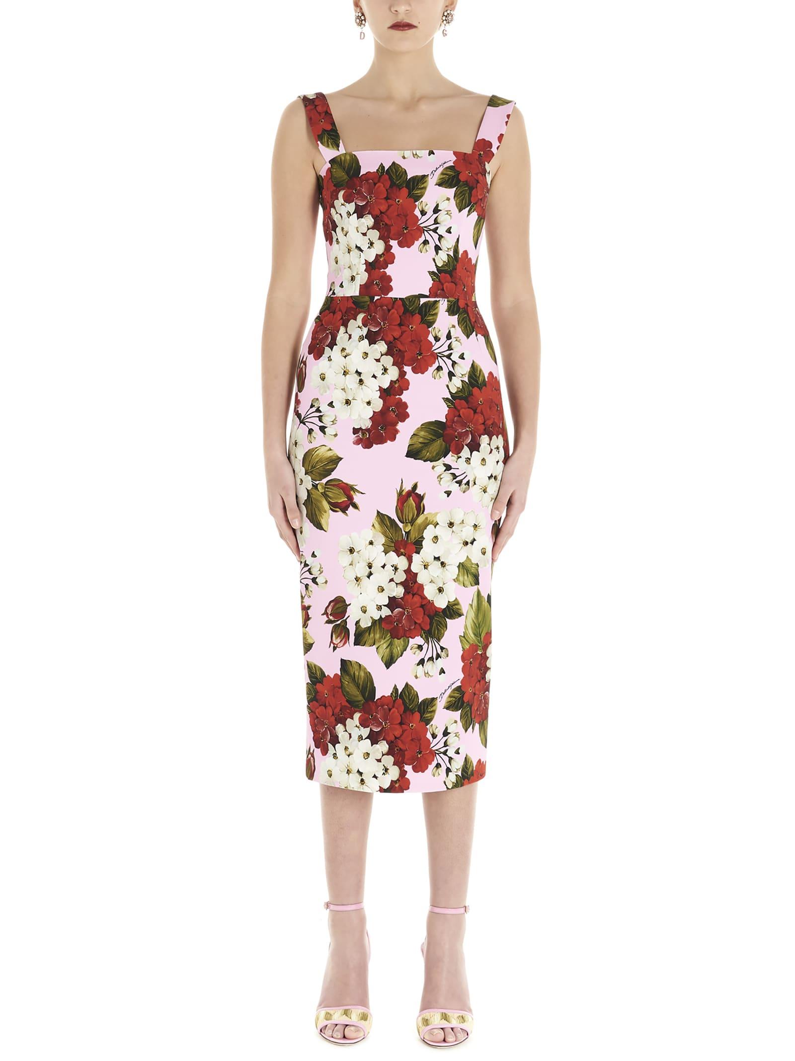 Buy Dolce & Gabbana gerani Dress online, shop Dolce & Gabbana with free shipping