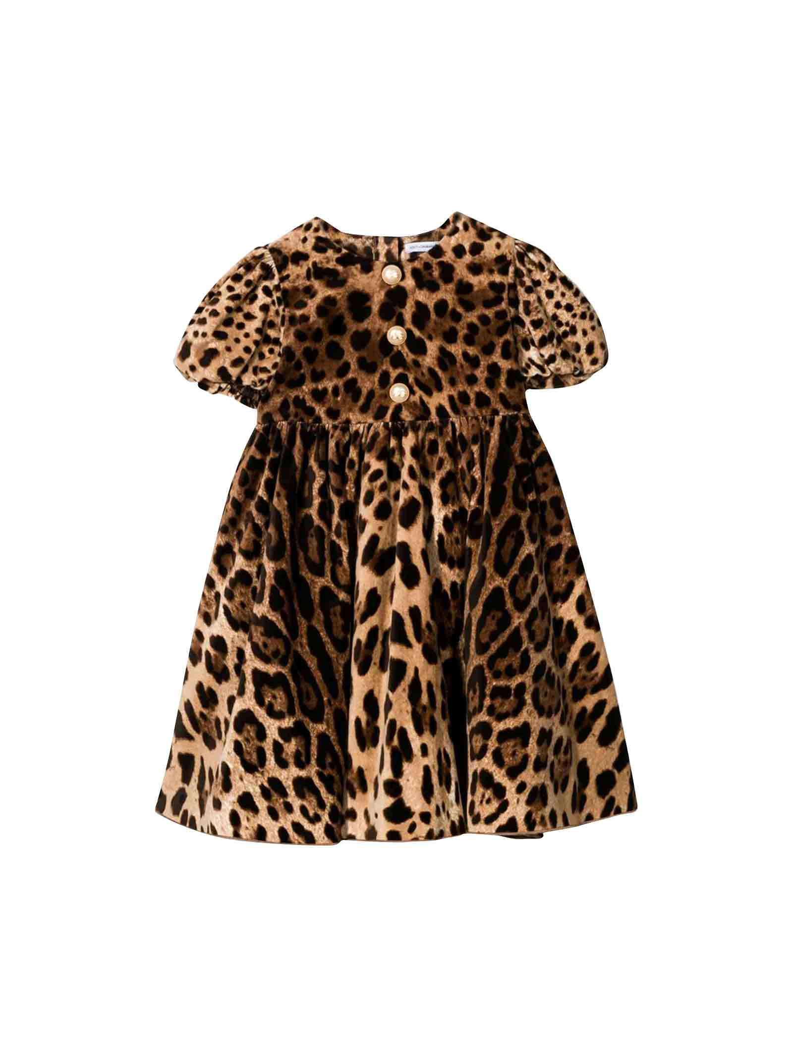 Dolce & Gabbana Dolce And Gabbana Kids Animalier Dress