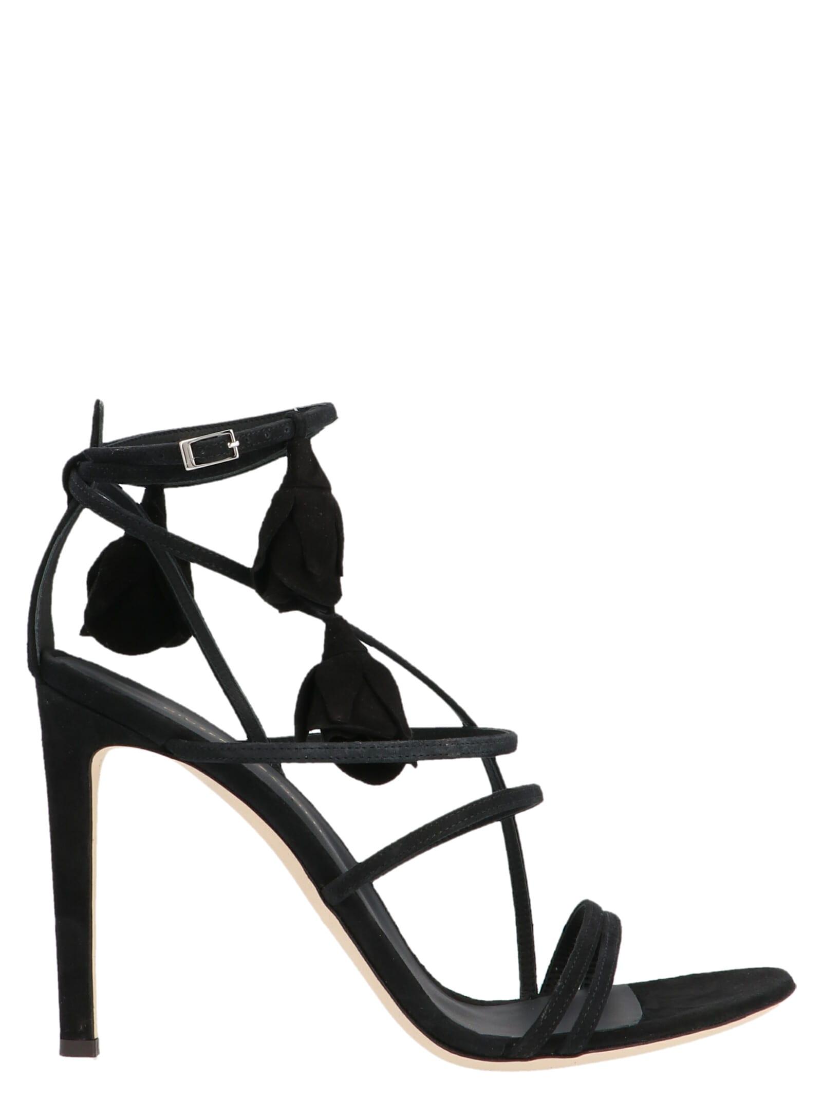 Giuseppe Zanotti basic 105 Shoes