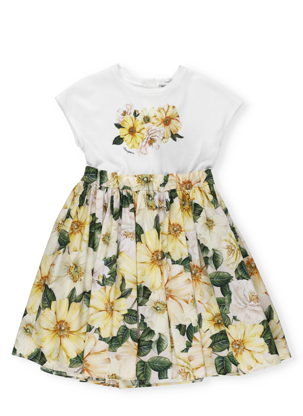 Buy Dolce & Gabbana Camelie Rosa Floral Dress online, shop Dolce & Gabbana with free shipping