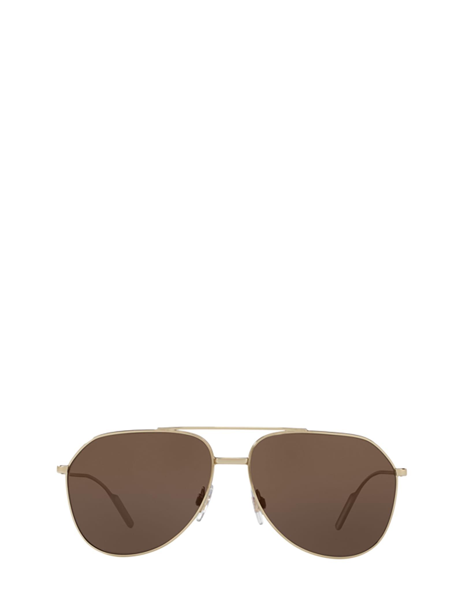 Dolce & Gabbana DG2166 488/73 SUNGLASSES