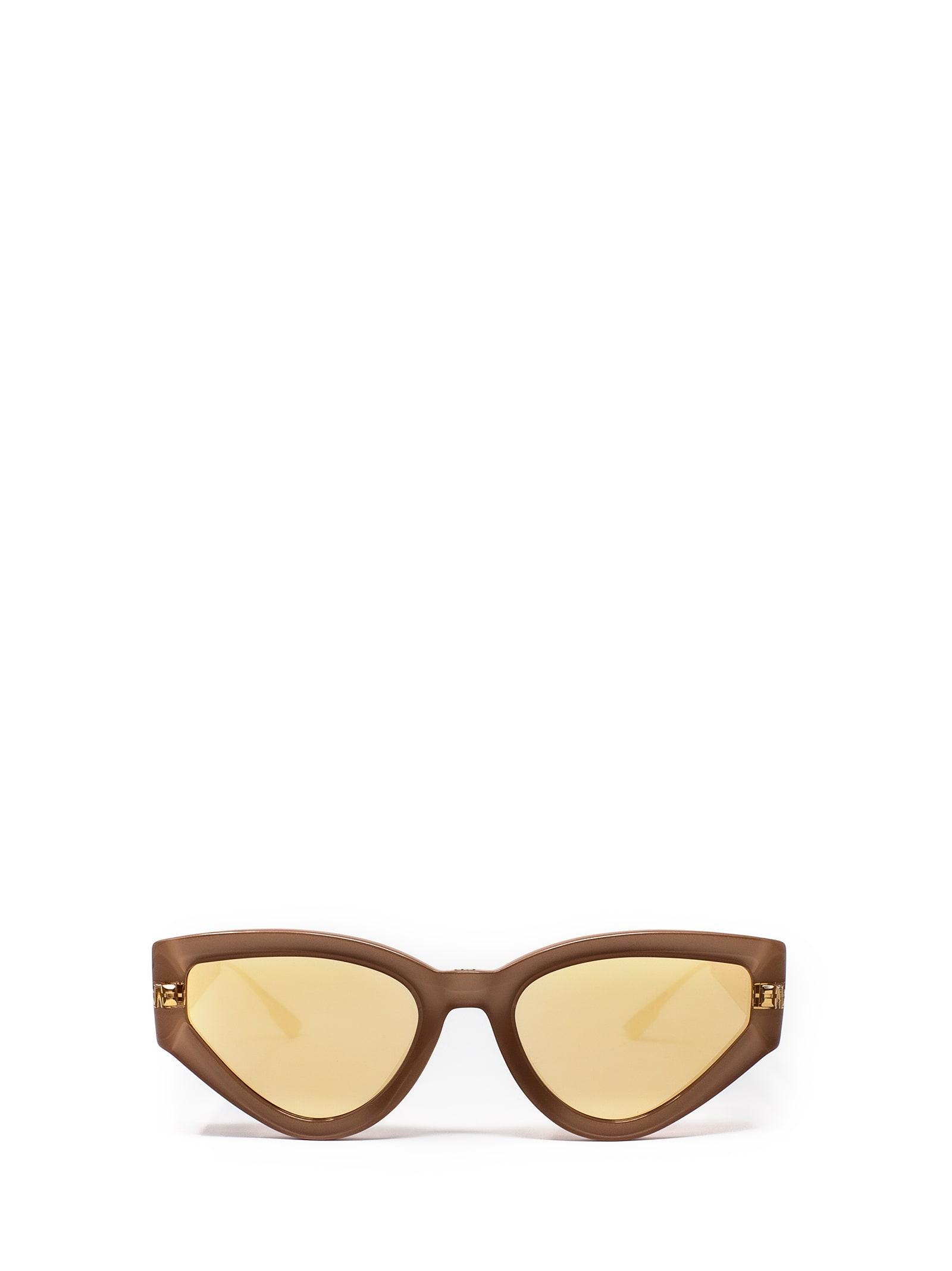 Dior Dior Catstyledior1 S45/sq Sunglasses