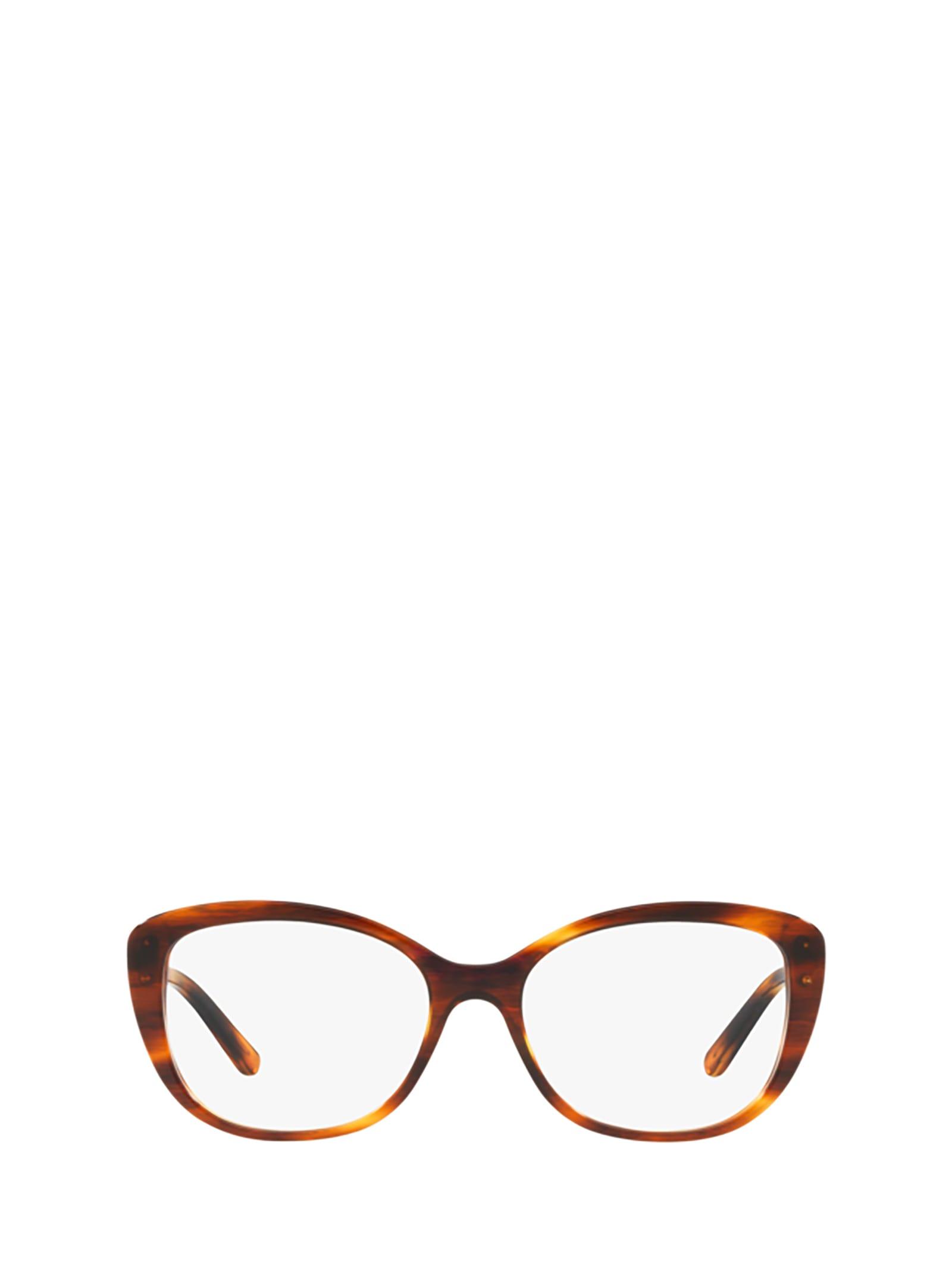 Ralph Lauren Ralph Lauren Rl6174 5007 Glasses