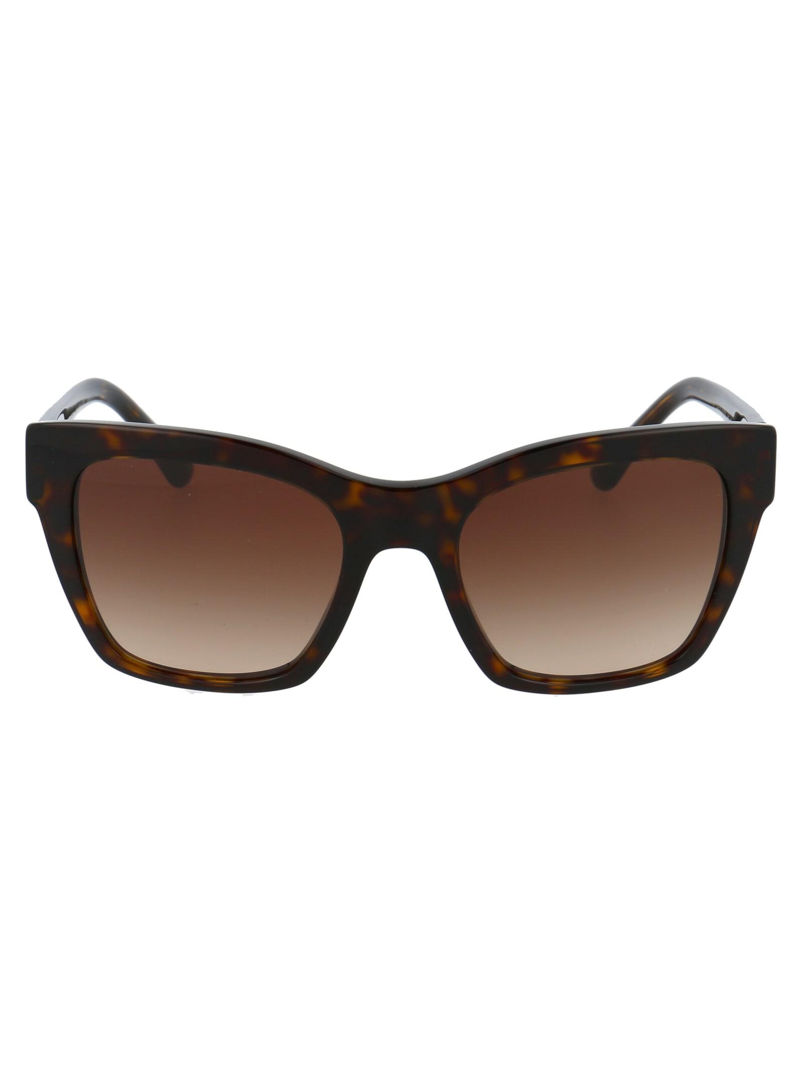 0dg4384 Sunglasses