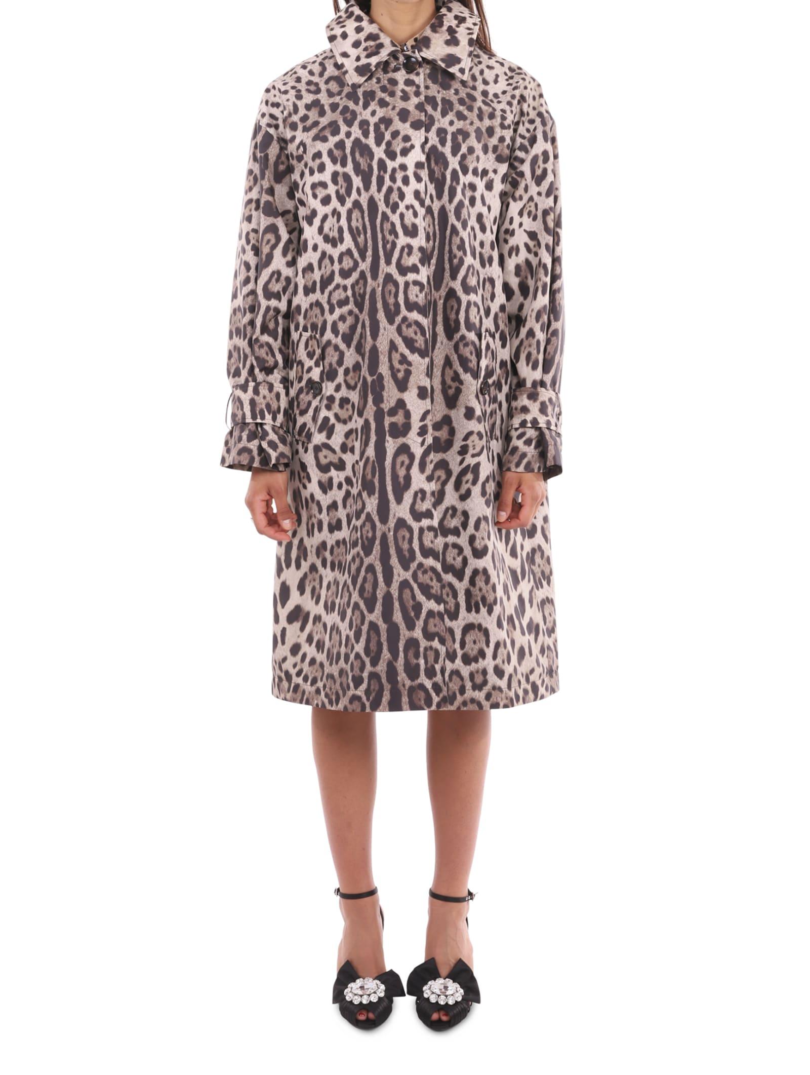 Dolce & Gabbana Leo Raincoat