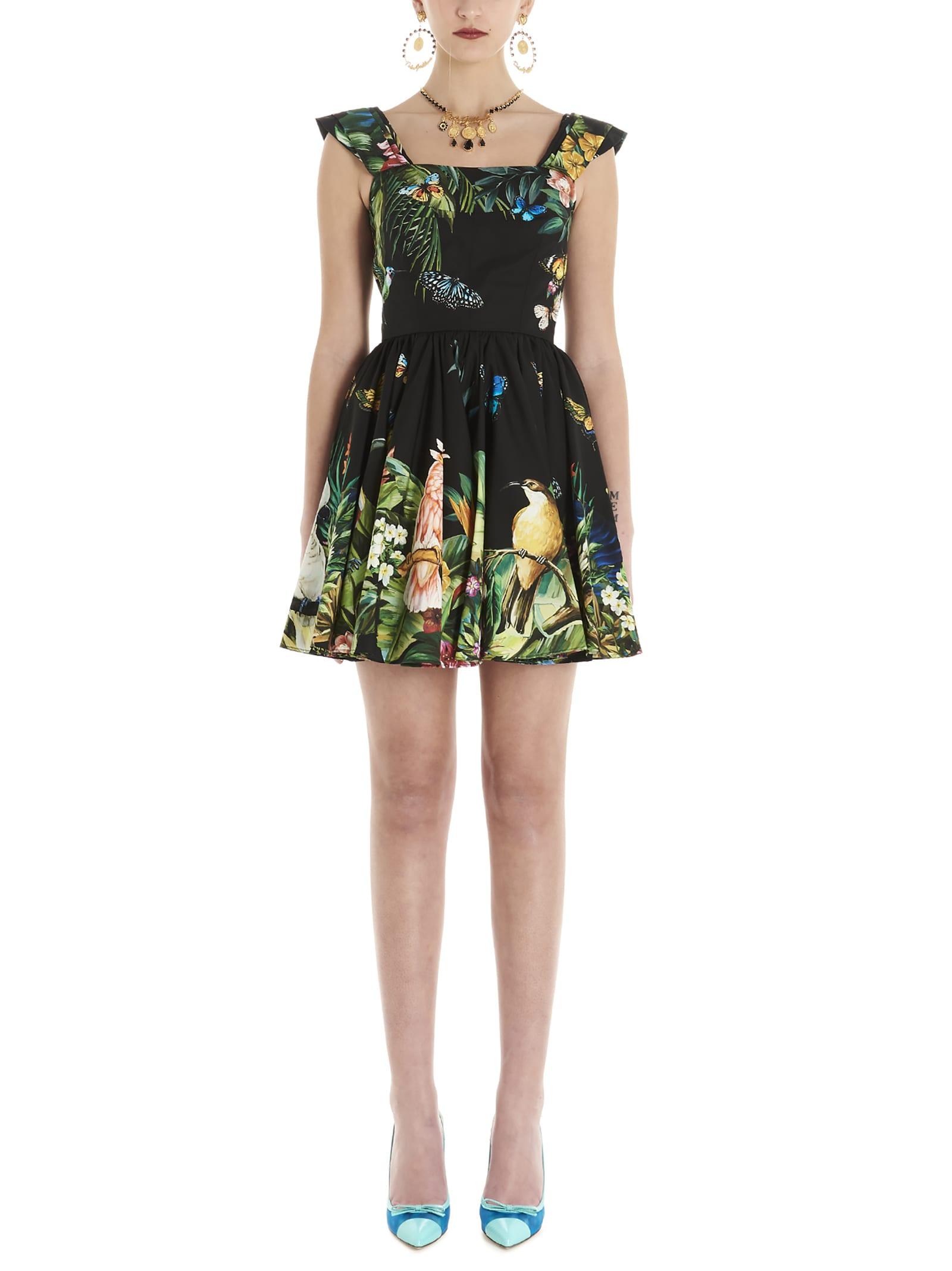 Buy Dolce & Gabbana mix Jungle Dress online, shop Dolce & Gabbana with free shipping