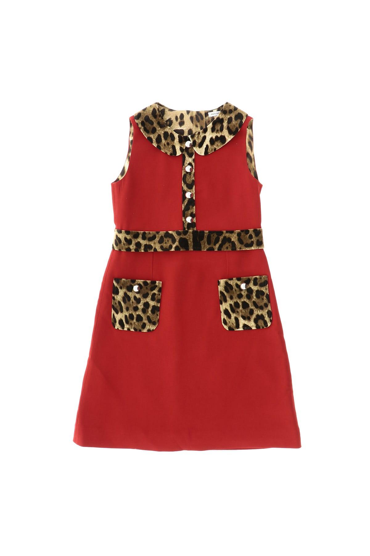 Buy Dolce & Gabbana Animalier Print Dress online, shop Dolce & Gabbana with free shipping