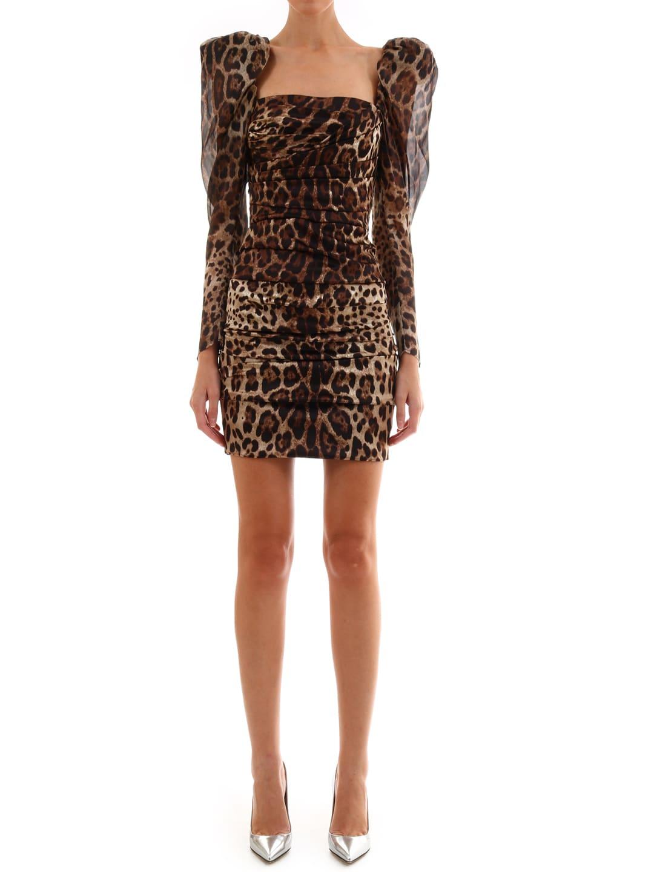 Dolce & Gabbana Leo Print Dress