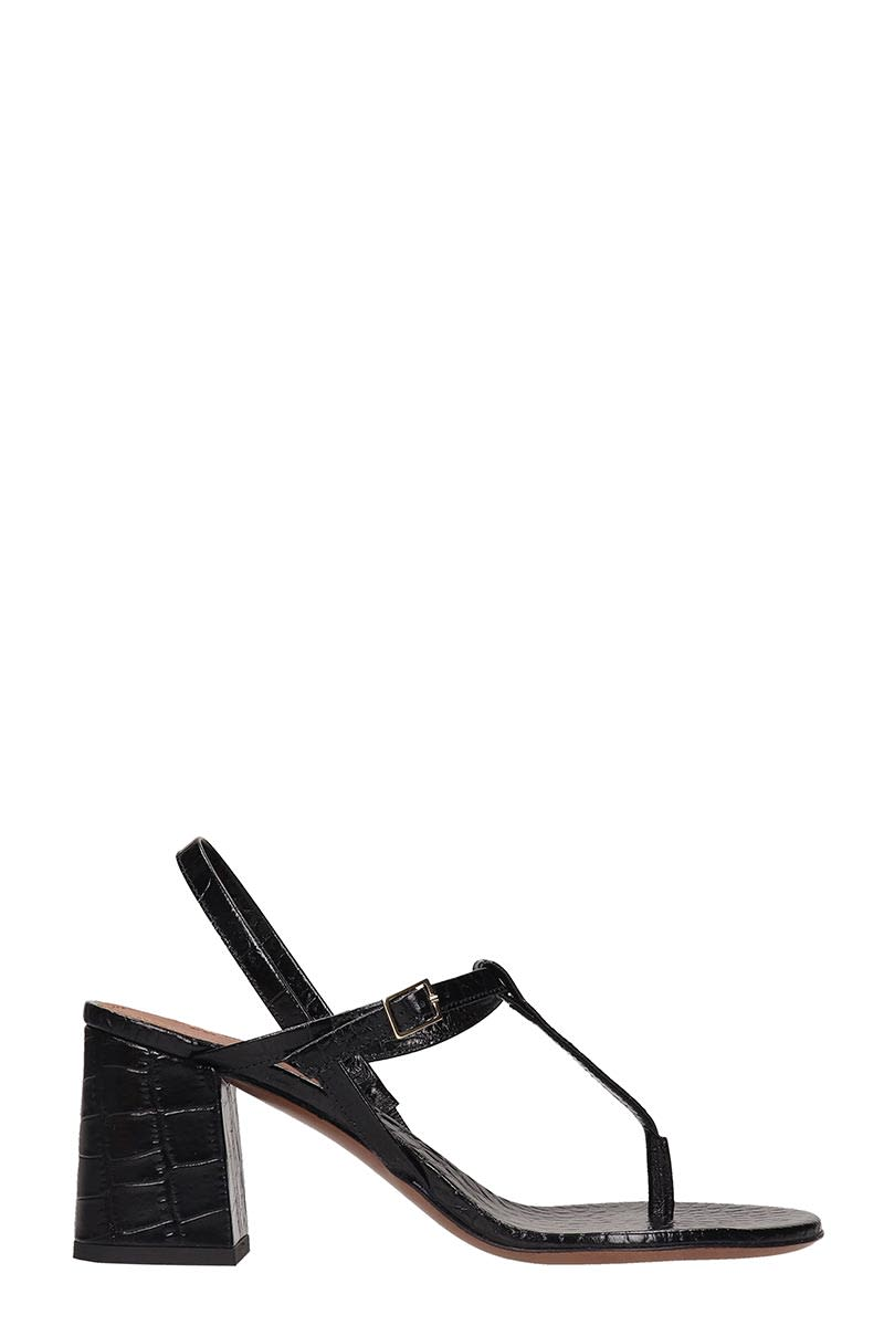 LAutre Chose Sandals In Black Leather