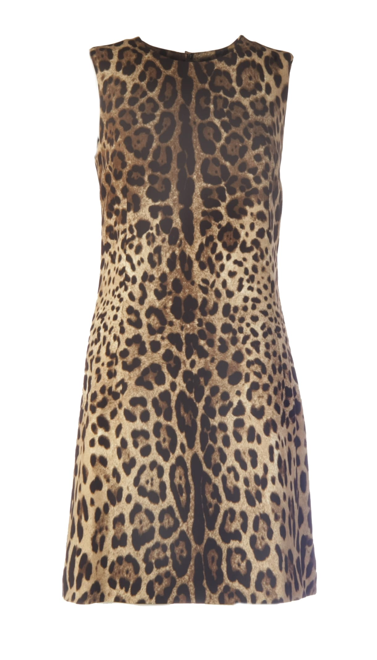 Buy Dolce & Gabbana Leopard Print Dress online, shop Dolce & Gabbana with free shipping