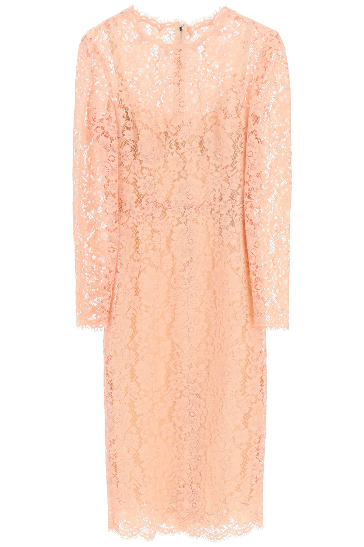 Buy Cordonetto Lace Dress online, shop Dolce & Gabbana with free shipping