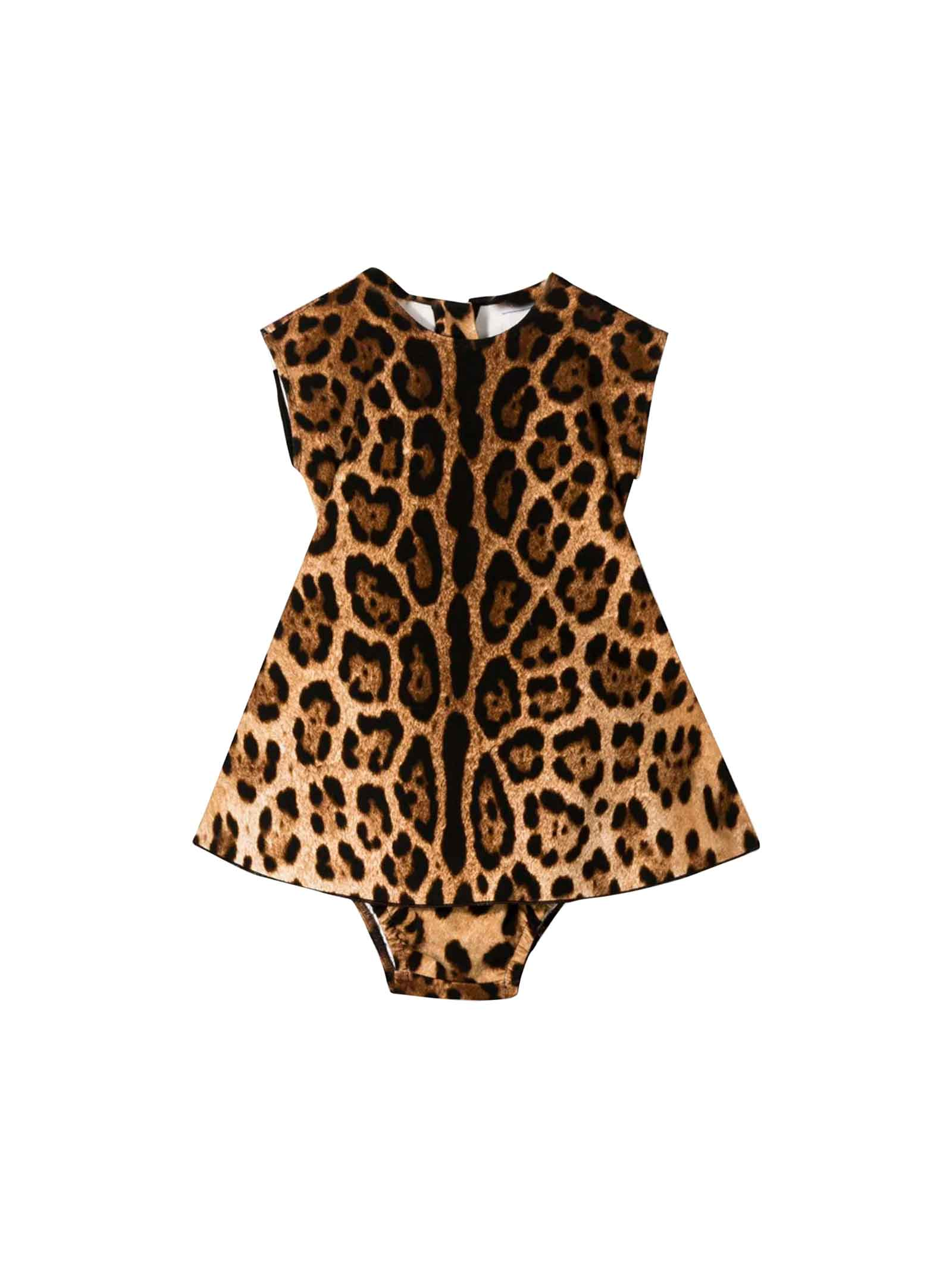 Dolce & Gabbana Dolce And Gabbana Kids Newborn Leopard Print Dress