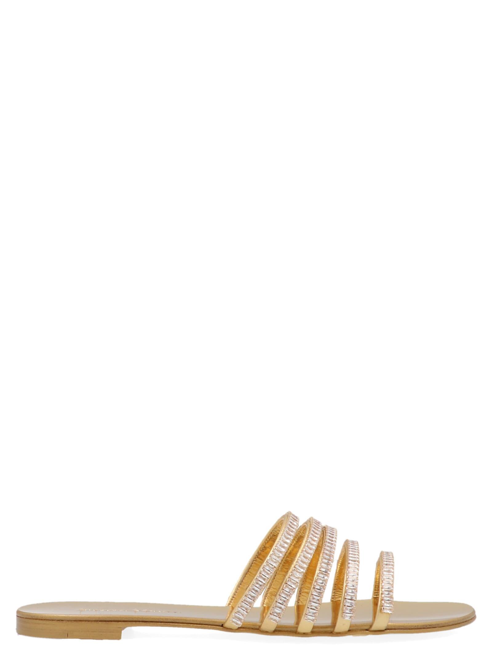Giuseppe Zanotti nuovo Roll Shoes