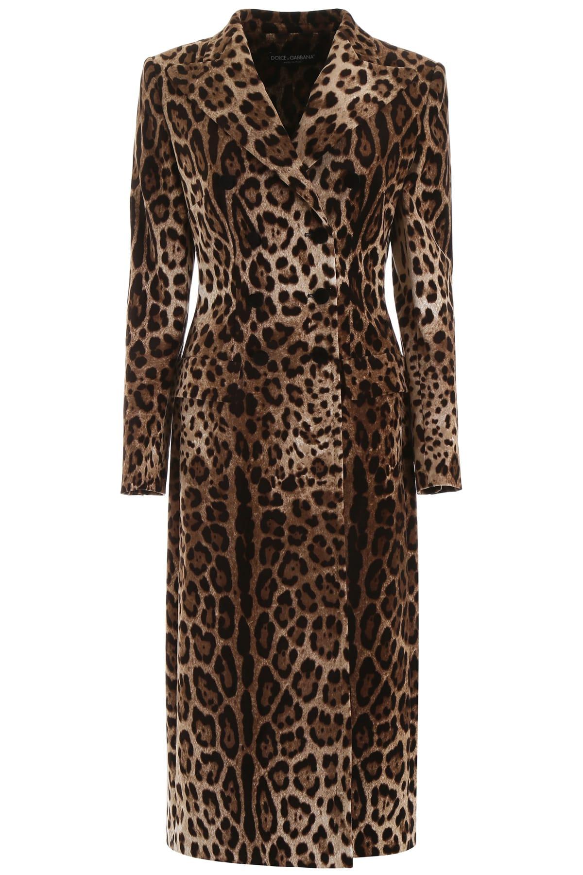 Dolce & Gabbana Leopard-printed Velvet Coat