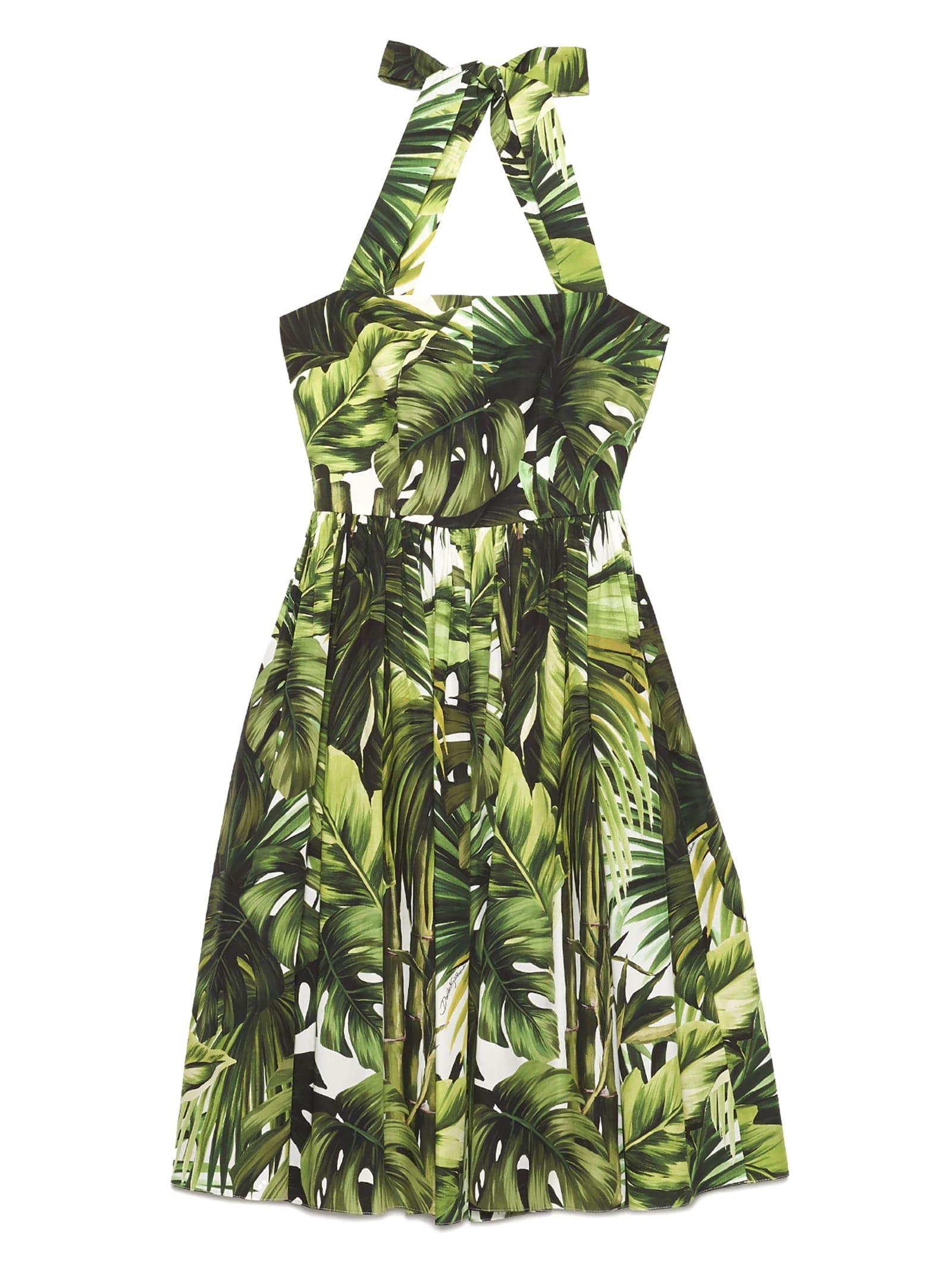 Buy Dolce & Gabbana foglie Dress online, shop Dolce & Gabbana with free shipping