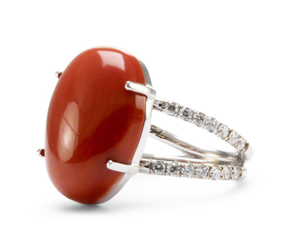 Lo Spazio Mare Rosso Ring