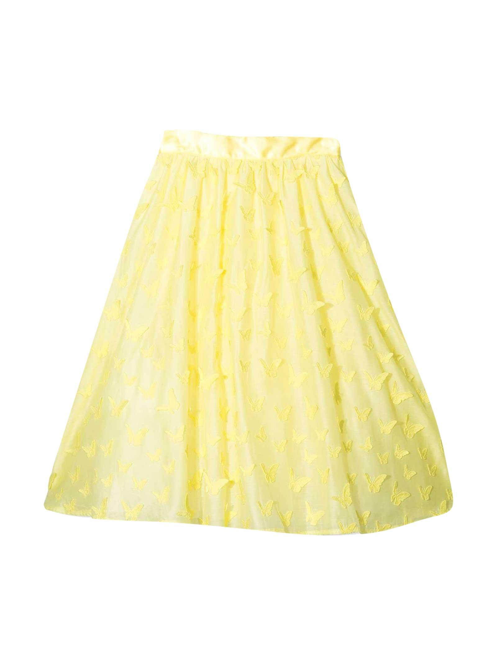 Skirt With Application