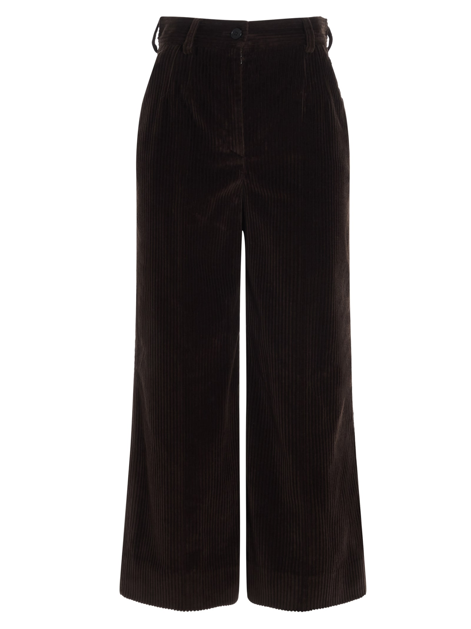 Dolce & Gabbana Pants In Brown