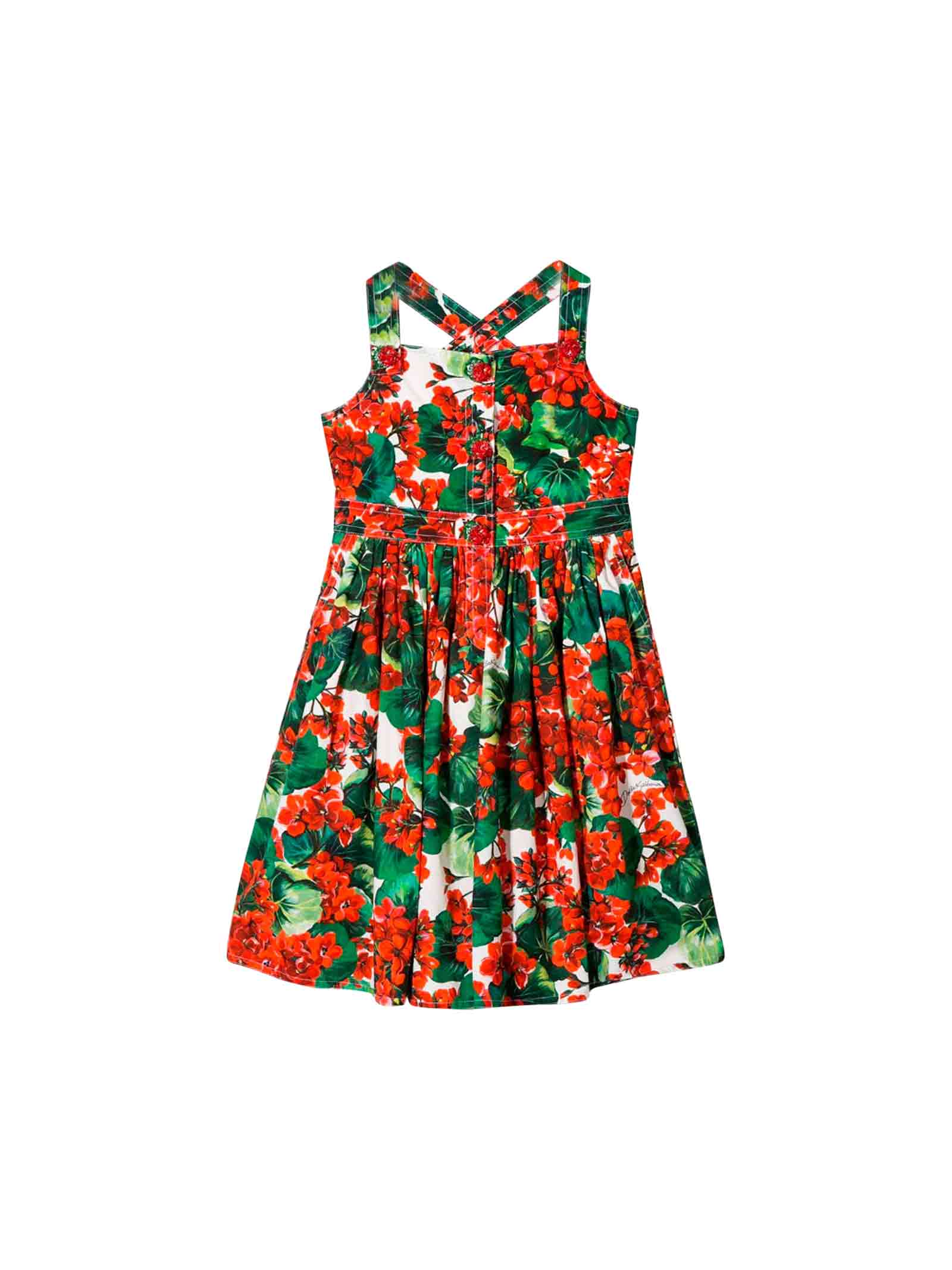 Dolce & Gabbana Dolce And Gabbana Kids Red Geraniums Print Dress