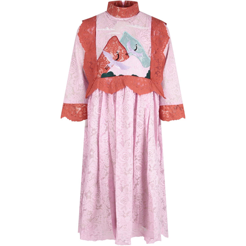 Raspberry Plum Pink valentine Girl Dress With Storks